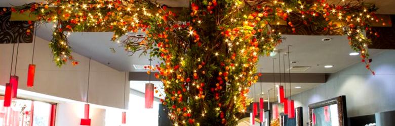 yang sing christmas blog